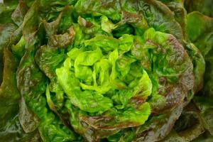 salad-621339_1280